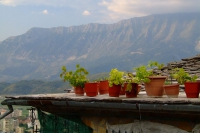 Flowers on the roof in Gjirokastër, Albania